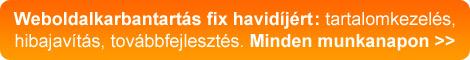Weboldal karbantartás fix havidíjért, minden munkanapon